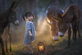 elena_shumilova елена шумилова лучшие детские фотографы инстаграма из России 2019