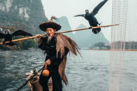 Cormorant fishing in China by Peter Yan instagram (@yantastic) 2019 travel china
